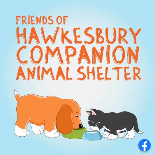 Animal shelter facebook page photo