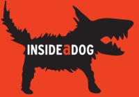 Inside a dog