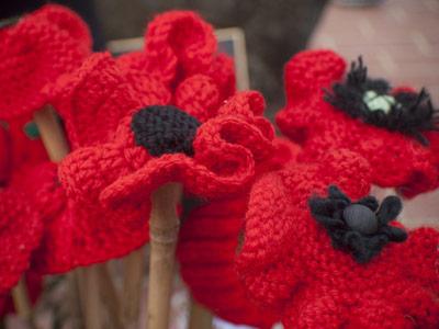 Poppy craft day