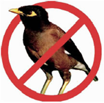 Logo indian Myna Bird with red circle and line through it.
