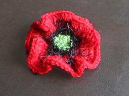 Poppy Project