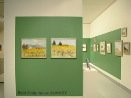Enid Colquhoun: Survey